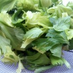 """Chique"" Recipe: Homemade Celery Salt"